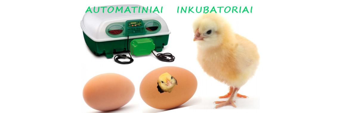 Buitiniai inkubatoriai smulkusukis.lt