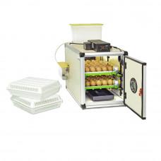Inkubatorius Cimuka Prodi CT60 SH