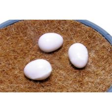 Kanarėlių kiaušinio muliažas