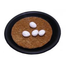 Fazanų kiaušinio muliažas