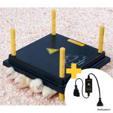 Šildymo plokštė Comfort viščiukams 30x30cm su reguliatoriumi