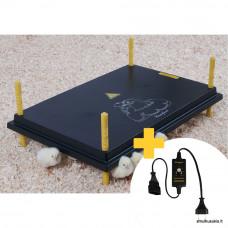 Šildymo plokštė Comfort viščiukams 40x60cm su reguliatoriumi